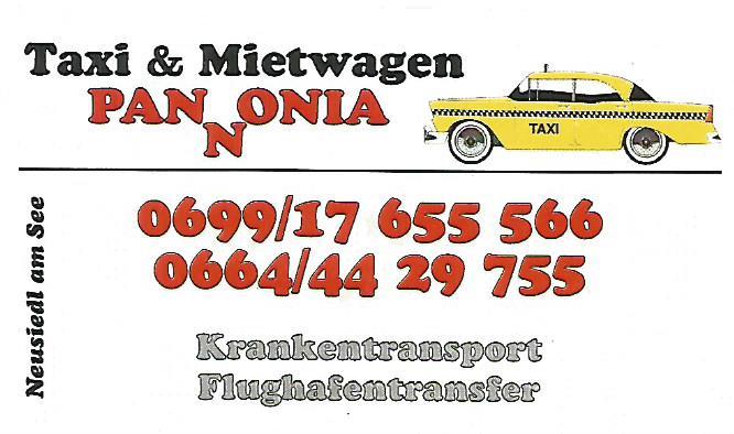 taxi ungarn preise